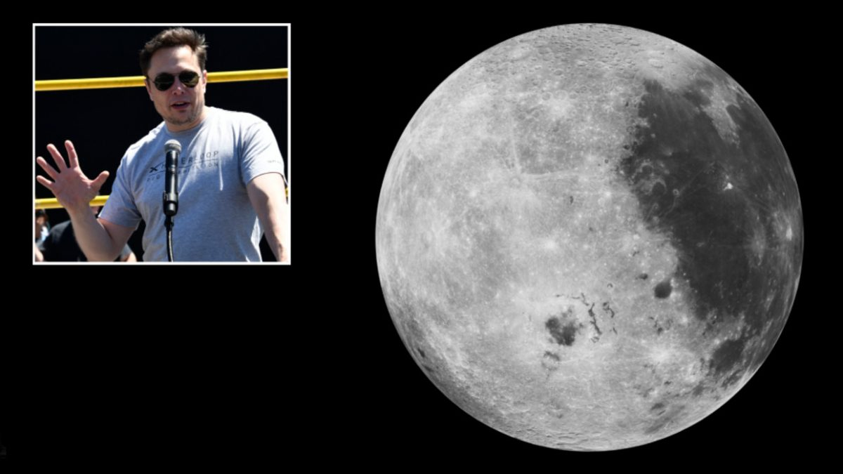 Elon Musk plans to be the first person to throw EDM festival on the Moon